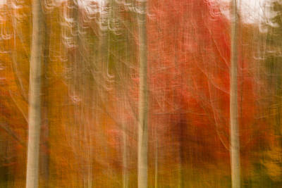 Photograph - Abstract Fall 17 by Joye Ardyn Durham