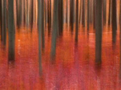 Red Abstract Art Mixed Media - Abstract Forest 2 by Leland D Howard