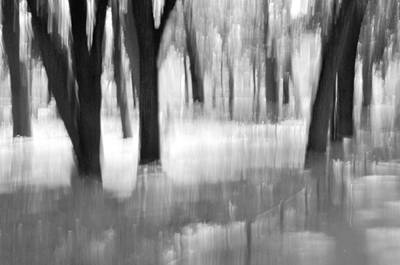 Fuzzy Digital Art - Abstract Forest. by   larisa Fedotova