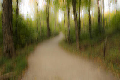Photograph - Abstract Forest Trail by Peg Runyan