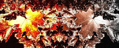 Digital Art - Abstract Fusion 247 by Will Borden