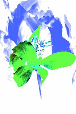 Abstract Green Art Print by Cathie Tyler