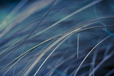 Photograph - Abstract In Blues. by Clare Bambers