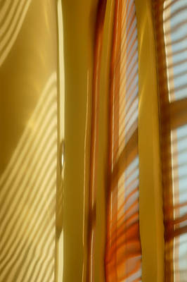 Venetian Blinds Photograph - Abstract In Brass 5 - Historic Library Building - Omaha Nebr by Nikolyn McDonald