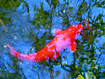 Painting - Abstract Koi 4 by Amy Vangsgard