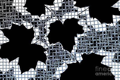 Abstract Leaf Pattern - Black White Light Blue Art Print by Natalie Kinnear