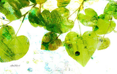 Abstract Leaves II Green And White  Print by Ann Powell
