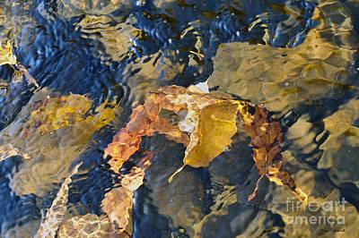 Abstract Leaves In Water Art Print by Dan Friend