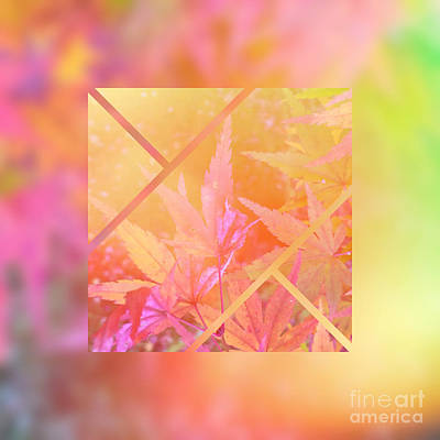 Abstruse Digital Art - Abstract Maple Leaf Magic 2 by Beverly Claire Kaiya