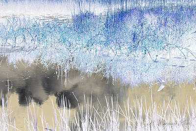 Photograph - Abstract Marsh  by Natalie Rotman Cote