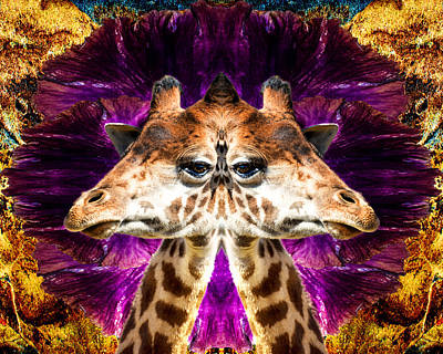 Giraffe Abstract Photograph - Abstract Mirrored Giraffe With Beautiful Eyes by Kim M Smith