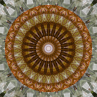 Digital Art - Mandala 2 - 075 by rd Erickson