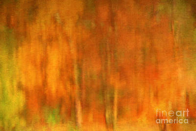 Of Autumn Photograph - Abstract Of Autumn by Darren Fisher