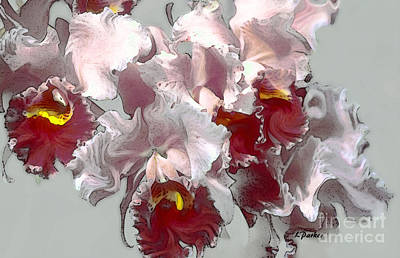Abstract Orchid Art Print by Linda  Parker