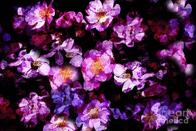 Digital Art - Abstract Painterly Pink And Purple Wild Roses by Beverly Claire Kaiya