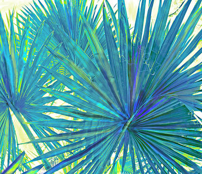 Digital Art - Abstract Palm 2 by Jane Schnetlage