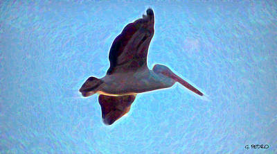 Photograph - Abstract Pelican Flight by George Pedro