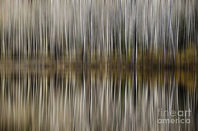 Photograph - Abstract Reflection by Dee Cresswell
