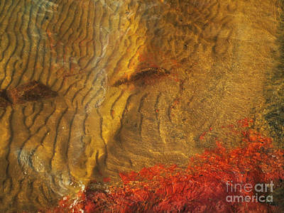 Abstract Shore 2 Art Print by Jonathan Welch