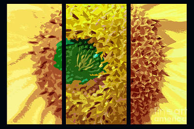 Photograph - Abstract Sunflower Triptych by Nina Silver