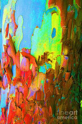 Pink Black Tree Rainbow Photograph - Abstract Trunk by Karen Adams