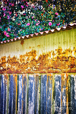 Photograph - Abstract Weathered Metal Cabin Detail by Silvia Ganora