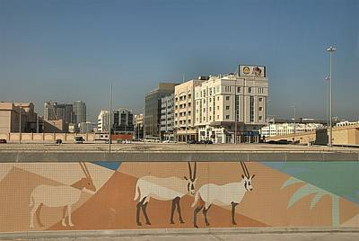Photograph - Abu Dhabi Outskirts by Steven Richman