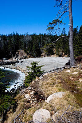 Photograph - Acadia Coast At Little Hunters Beach 2946 by Brent L Ander