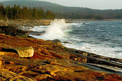 Photograph - Acadia Coast At Schoodic Point 0258 by Brent L Ander