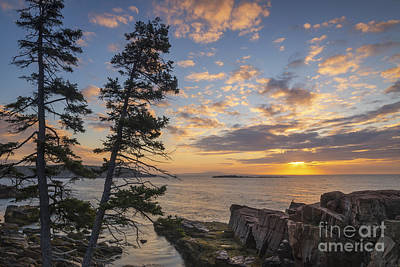 Surrealism Royalty-Free and Rights-Managed Images - Acadia Coast at Sunrise  by Michael Ver Sprill