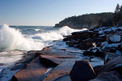 Photograph - Acadia Coast Overlooking Otter Point 9422 by Brent L Ander