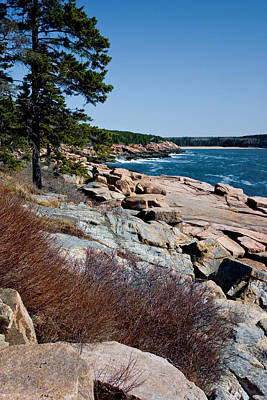 Photograph - Acadia Coast Overlooking Thunder Hole 2759 by Brent L Ander