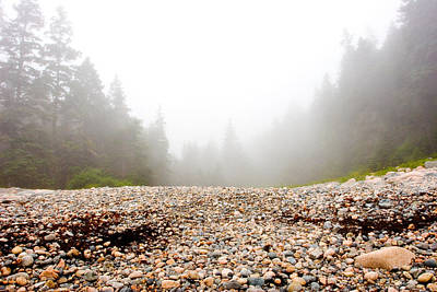 Photograph - Acadia Fog At Hunters Beach by Brent L Ander