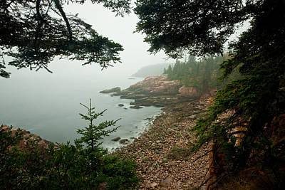 Photograph - Acadia Fog At Monument Cove 4335 by Brent L Ander