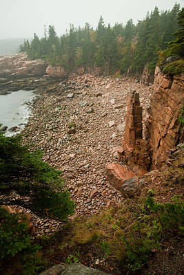 Photograph - Acadia Fog At Monument Cove 4337 by Brent L Ander