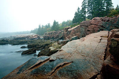 Photograph - Acadia Fog At Thunder Hole 4325 by Brent L Ander