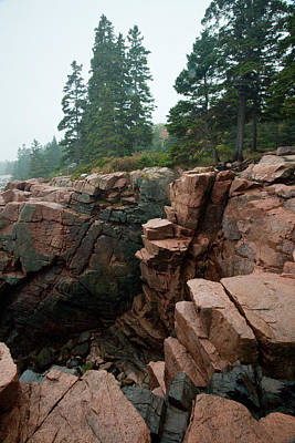 Photograph - Acadia Fog Near Monument Cove 4336 by Brent L Ander