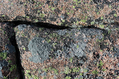 Photograph - Acadia Granite 10 by Mary Bedy