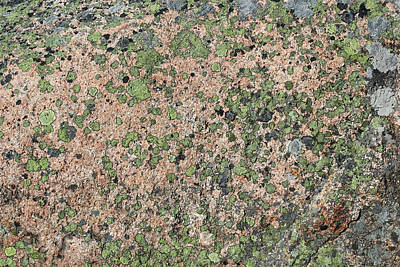Photograph - Acadia Granite 16 by Mary Bedy