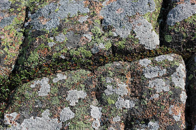 Photograph - Acadia Granite 23 by Mary Bedy