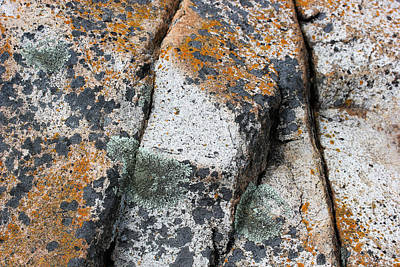 Photograph - Acadia Granite 5 by Mary Bedy