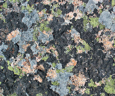 Photograph - Acadia Granite 7 by Mary Bedy