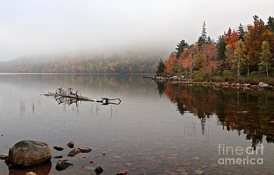Photograph - Acadia In The Fog by Karin Pinkham