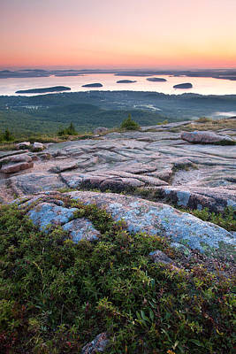Acadia Morning Art Print by Patrick Downey