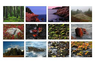 Photograph - Acadia National Park Greetings by Juergen Roth