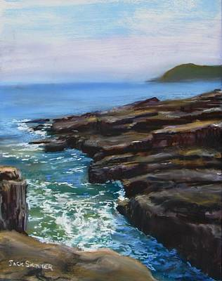 Painting - Acadia National Park  by Jack Skinner