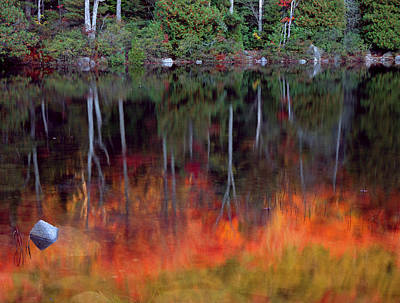Reflexion Photograph - Acadia National Park, Maine by Scott T. Smith