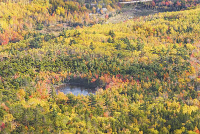 Photograph - Acadia National Park - Mount Desert Island -fall Foliage- Maine by Keith Webber Jr