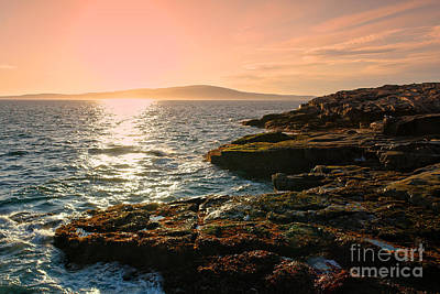 Maine Shore Photograph - Acadia National Park by Olivier Le Queinec