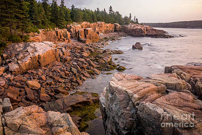 Photograph - Acadian Coast 1 by Susan Cole Kelly